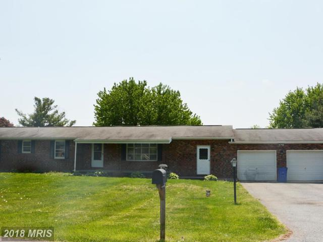 4505 Pine Valley Court, Middletown, MD 21769 (#FR10236781) :: Ultimate Selling Team