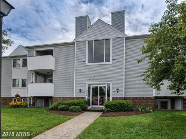 2129 Wainwright Court Bc, Frederick, MD 21702 (#FR10314969) :: Pearson Smith Realty