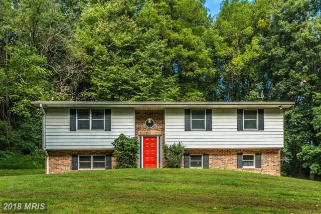 4310 Rolling Acres Court, Mount Airy, MD 21771 (#FR10315936) :: The Maryland Group of Long & Foster