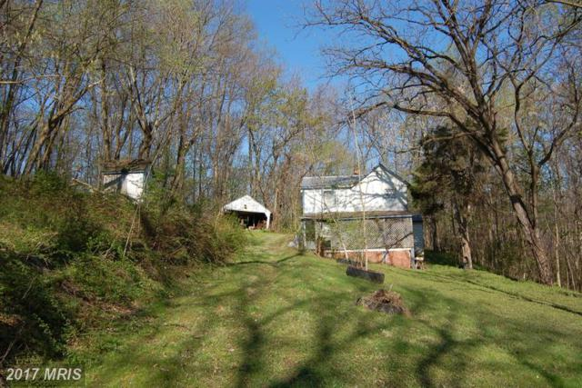6762 Ed Sears Road, Dickerson, MD 20842 (#FR9693203) :: Pearson Smith Realty