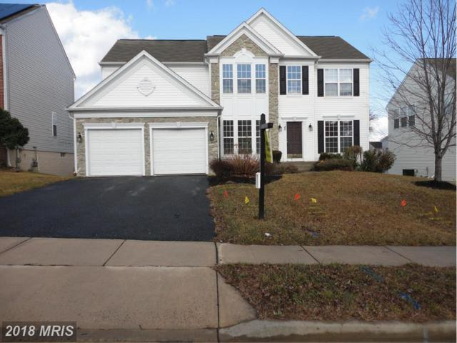 25 Jeffrey Lane, Brunswick, MD 21758 (#FR9829673) :: Pearson Smith Realty
