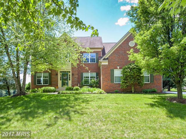 9923 Ritchie Drive, Ijamsville, MD 21754 (#FR9934667) :: LoCoMusings
