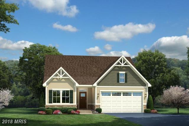 0081 Atlantis Lane, LAKE FREDERICK, VA 22630 (#FV10156133) :: Browning Homes Group