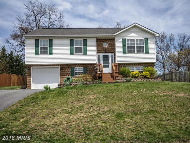 124 Hill Valley Drive, Winchester, VA 22602 (#FV10224871) :: Advance Realty Bel Air, Inc