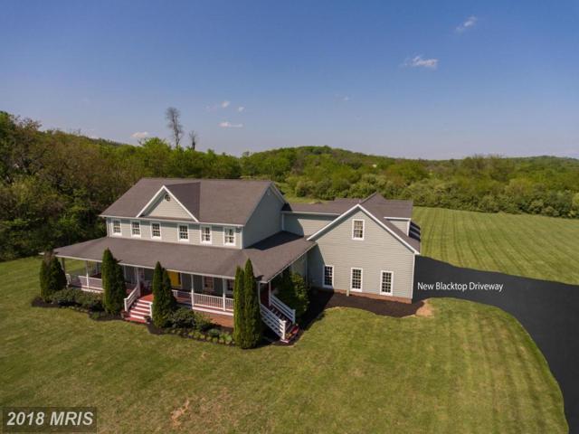 860 Apple Pie Ridge Road, Winchester, VA 22603 (#FV10237133) :: Bob Lucido Team of Keller Williams Integrity