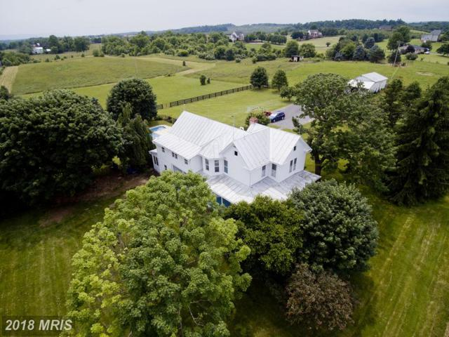 171 Laurel Grove Road, Winchester, VA 22602 (#FV10259178) :: The Maryland Group of Long & Foster