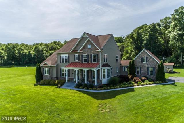 451 Crispin Trail, Winchester, VA 22603 (#FV10287570) :: The Maryland Group of Long & Foster