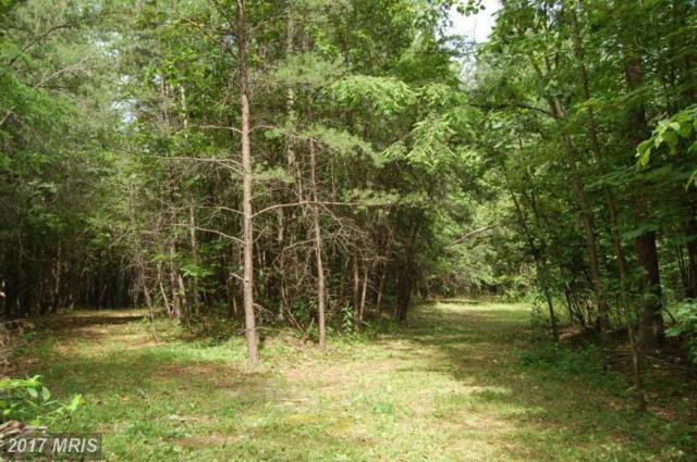 Pine Tree Court, Gore, VA 22637 (#FV9617712) :: LoCoMusings