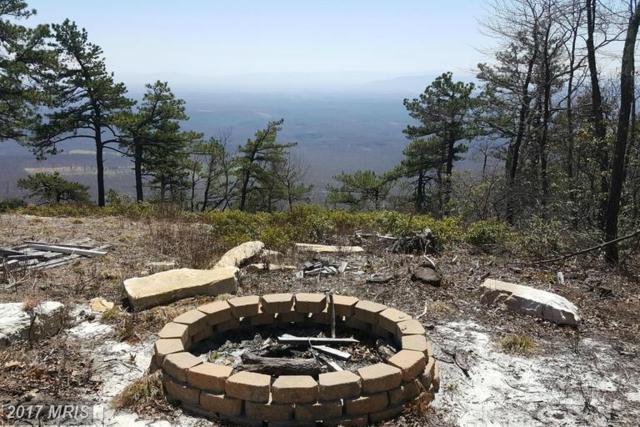 27 Valley View Trail, Winchester, VA 22602 (#FV9633222) :: LoCoMusings