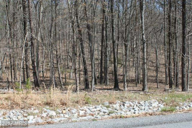 32 Creola Drive, Winchester, VA 22603 (#FV9653920) :: LoCoMusings