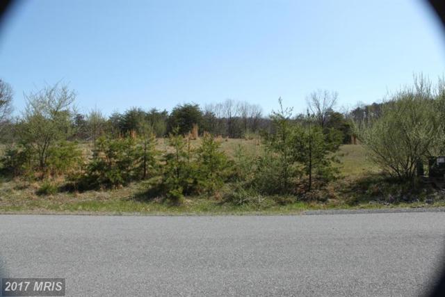 36 Creola Drive, Winchester, VA 22603 (#FV9653978) :: LoCoMusings
