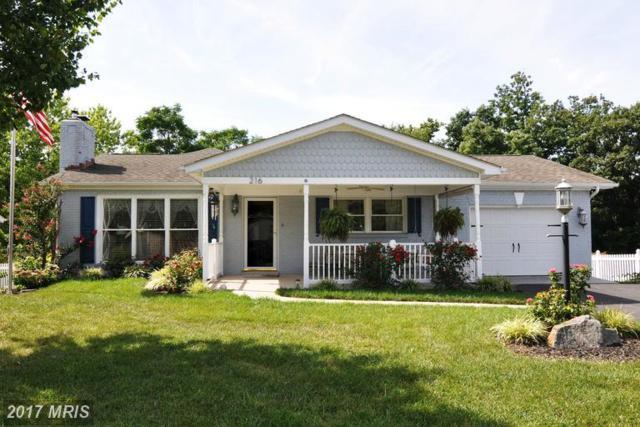 216 Dogwood Road, Winchester, VA 22602 (#FV9756145) :: LoCoMusings