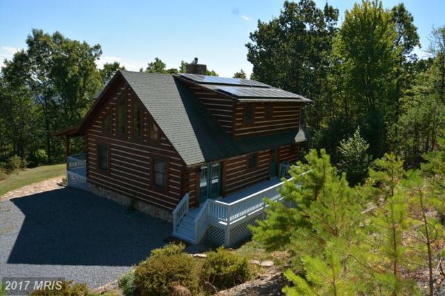 400 Great Mountain Lane, Winchester, VA 22602 (#FV9776901) :: LoCoMusings