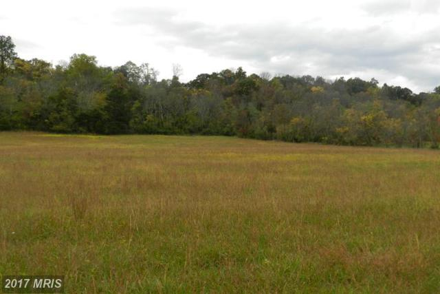 LOT 9 Back Mountain Road, Winchester, VA 22602 (#FV9792248) :: LoCoMusings