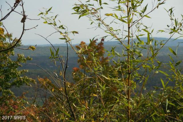 Outback Trail, Winchester, VA 22602 (#FV9805642) :: LoCoMusings