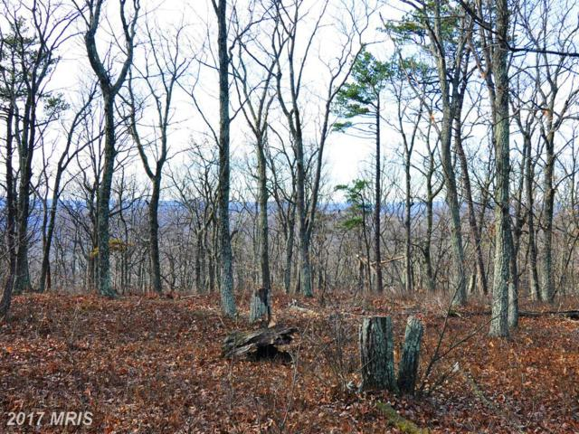 LOT 95 Bobcat Trail, Winchester, VA 22602 (#FV9820098) :: Pearson Smith Realty