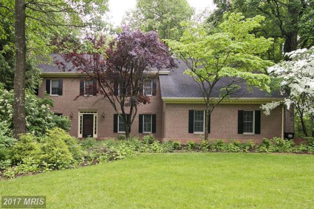 103 Anne Glass Road, Winchester, VA 22602 (#FV9861996) :: LoCoMusings