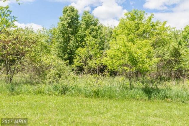 0 Tavistock Drive, Winchester, VA 22602 (#FV9945113) :: Pearson Smith Realty