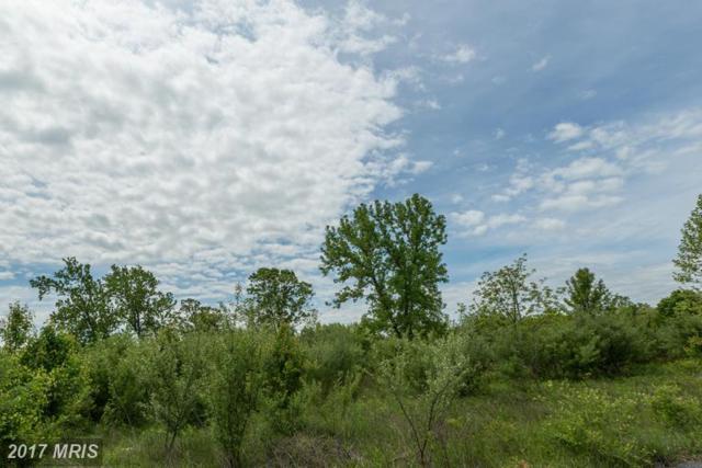 0 Tavistock Drive, Winchester, VA 22602 (#FV9945149) :: LoCoMusings