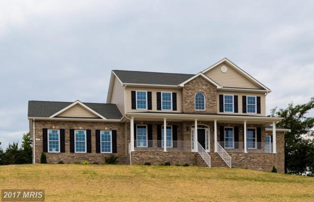 3405 Apple Pie Ridge Road, Winchester, VA 22603 (#FV9971924) :: Pearson Smith Realty