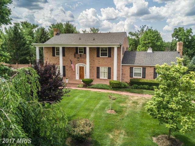 104 Dutton Place, Winchester, VA 22601 (#FV9981100) :: Pearson Smith Realty