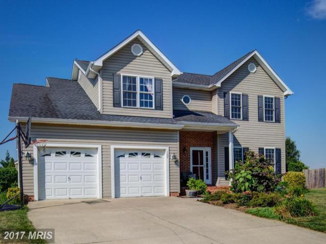 102 Monet Terrace, Winchester, VA 22602 (#FV9983187) :: Pearson Smith Realty