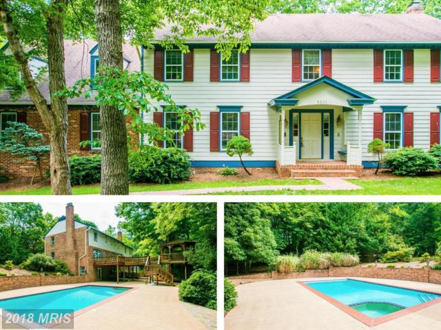 8501 Shadeway Place, Springfield, VA 22153 (#FX10004609) :: Pearson Smith Realty