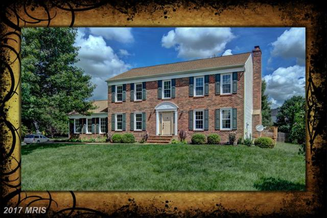 13125 Pelmira Ridge Court, Oak Hill, VA 20171 (#FX10045473) :: LoCoMusings