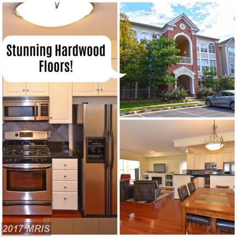 7709-H Haynes Point Way H, Alexandria, VA 22315 (#FX10055411) :: LoCoMusings