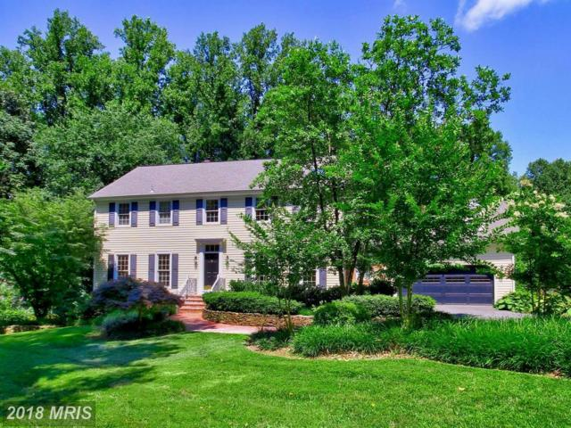 743 Kentland Drive, Great Falls, VA 22066 (#FX10062161) :: Great Falls Great Homes