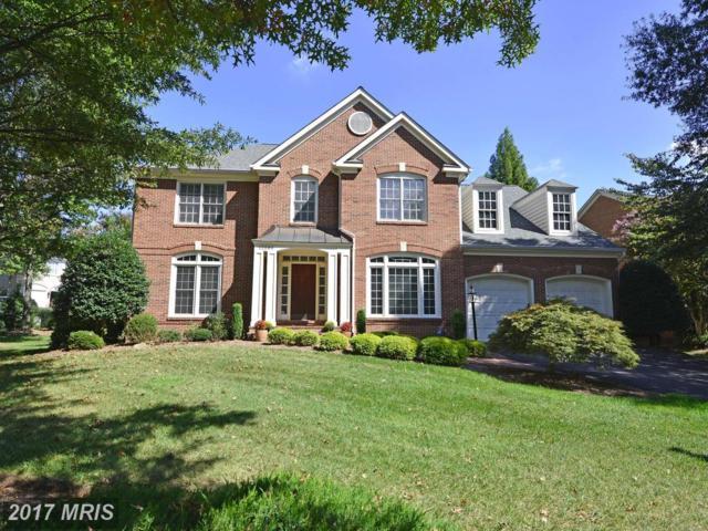 12586 Misty Creek Lane, Fairfax, VA 22033 (#FX10064720) :: LoCoMusings