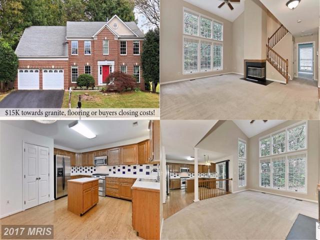 13782 Laurel Rock Drive, Clifton, VA 20124 (#FX10079940) :: Browning Homes Group
