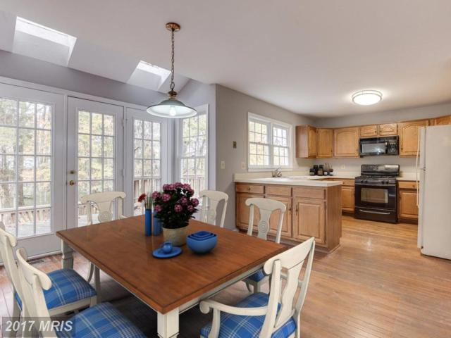13606 Old Chatwood Place, Chantilly, VA 20151 (#FX10100004) :: Pearson Smith Realty