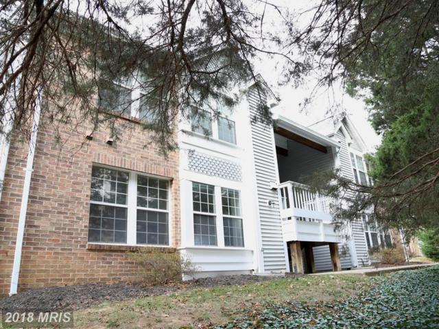 3405 Lakeside View Drive 18-1, Falls Church, VA 22041 (#FX10115461) :: Pearson Smith Realty