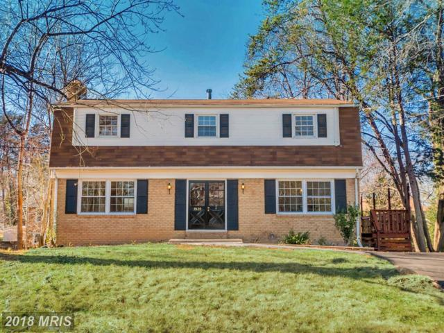 8630 Woodward Avenue, Alexandria, VA 22309 (#FX10125408) :: Pearson Smith Realty