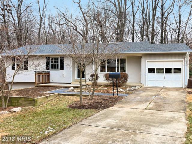 6101 Fernleigh Boulevard, Springfield, VA 22152 (#FX10131522) :: Pearson Smith Realty