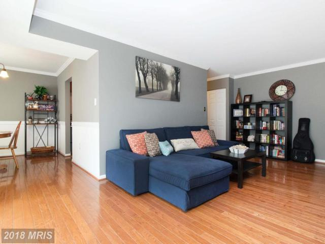 9704 Kingsbridge Drive #204, Fairfax, VA 22031 (#FX10216148) :: Circadian Realty Group