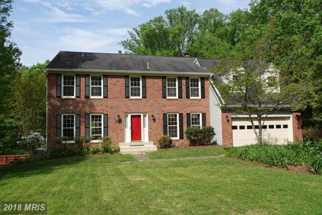 10295 Dunn Meadow Road, Vienna, VA 22182 (#FX10236651) :: The Maryland Group of Long & Foster