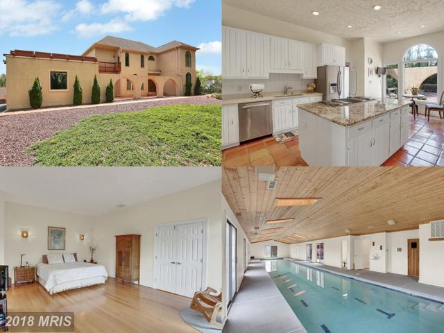 12025 Seven Hills Lane, Clifton, VA 20124 (#FX10237828) :: Eric Stewart Group