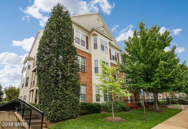 6475 Cheyenne Drive #301, Alexandria, VA 22312 (#FX10243132) :: Keller Williams Pat Hiban Real Estate Group