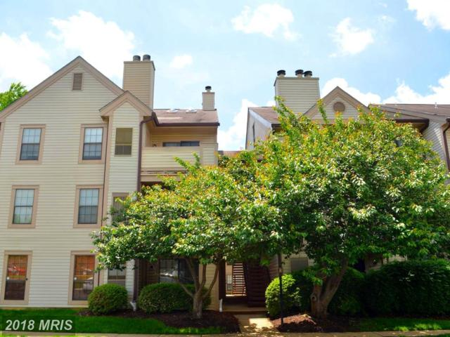6951 Mary Caroline Circle G, Alexandria, VA 22310 (#FX10247082) :: Bob Lucido Team of Keller Williams Integrity