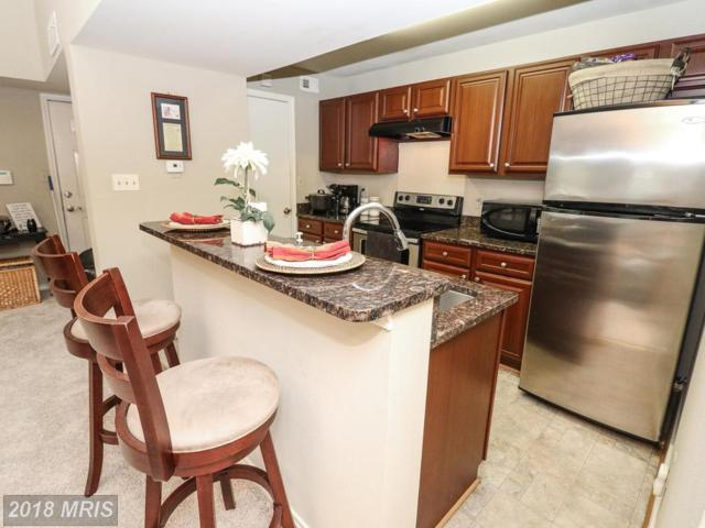12157 Penderview Terrace #836, Fairfax, VA 22033 (#FX10276546) :: Pearson Smith Realty