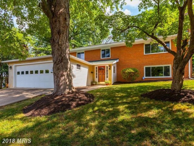 7022 Hector Road, Mclean, VA 22101 (#FX10285993) :: Fine Nest Realty Group