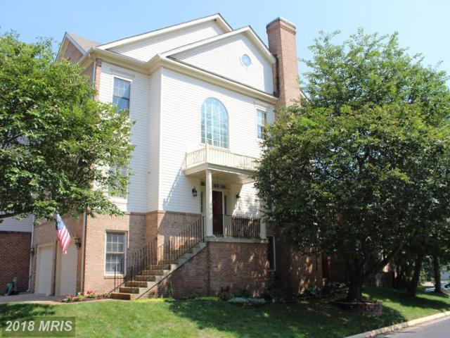 6640 Dunwich Way, Alexandria, VA 22315 (#FX10313413) :: Browning Homes Group