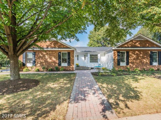 3321 Laneview Place, Herndon, VA 20171 (#FX9010875) :: Pearson Smith Realty