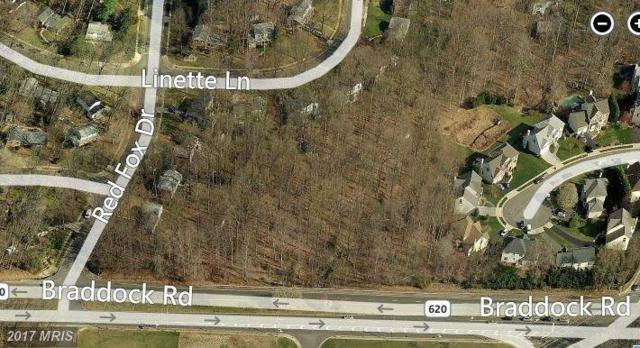 Braddock Road, Annandale, VA 22003 (#FX9734107) :: LoCoMusings