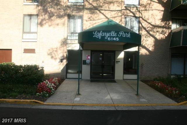 6145 Leesburg Pike #504, Falls Church, VA 22041 (#FX9804188) :: LoCoMusings