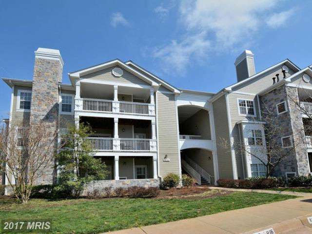 1716 Lake Shore Crest Drive #34, Reston, VA 20190 (#FX9900607) :: LoCoMusings