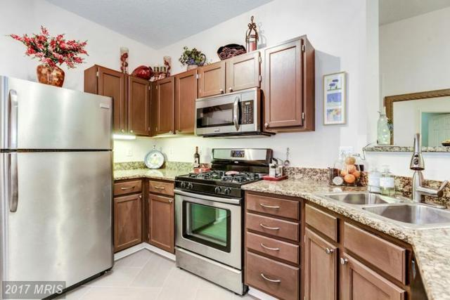 1705 Lake Shore Crest Drive #12, Reston, VA 20190 (#FX9908021) :: LoCoMusings
