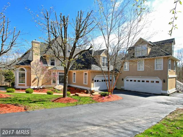 5411 Chandley Farm Court, Centreville, VA 20120 (#FX9910378) :: AJ Team Realty